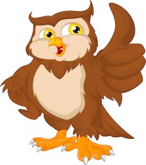 Cartoon owl bird thumb up
