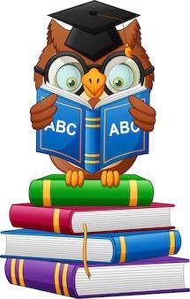 Cartoon owl holding book