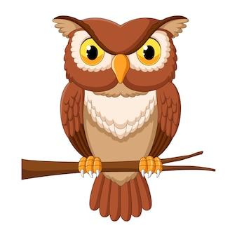 Мультфильм сова на ветке дерева