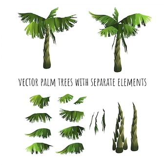 Cartoon palm trees with separated elements