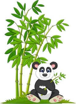 Cartoon panda sitting and eating bamboo