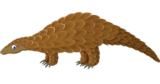 Cartoon pangolin isolated on white background
