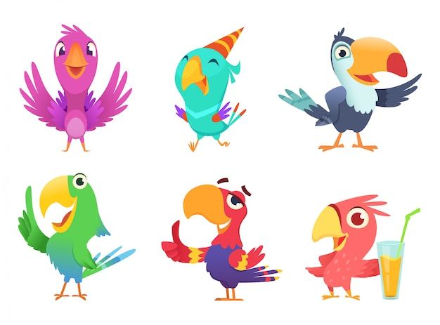 Cartoon parrots characters, cute feathered birds with colored wings funny exotic parrot various action poses  isolated