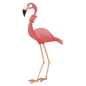 Мультфильм розовый фламинго. забавный фламинго с завязанной в узел шеей.
