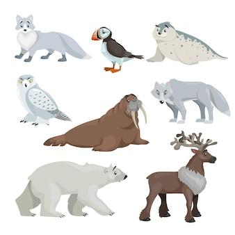 漫画の極地と北極圏の動物。雪に覆われたキツネ、アザラシ、ツノメドリ、セイウチ、オオカミ、ホッキョクグマ、トナカイ。教育ベクトルイラスト集。