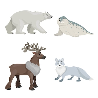 Cartoon polar animals collection