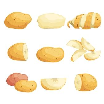 漫画ジャガイモセット。全体、スライス、皮をむいた。フライングスライス。農場の新鮮な野菜。市場、パッケージに最適です。イラスト集。白い背景の上。