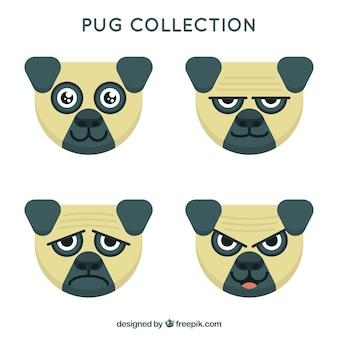 Cartoon pug collection