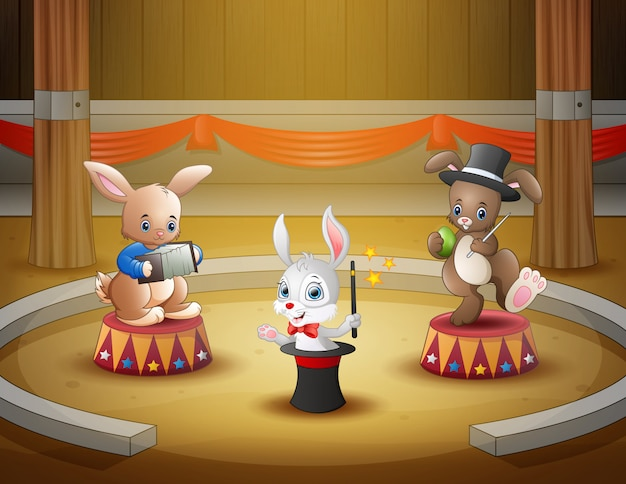 Cartoon rabbits circus performance on the arena
