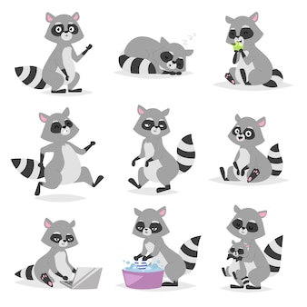 Cartoon raccoon  illustration.