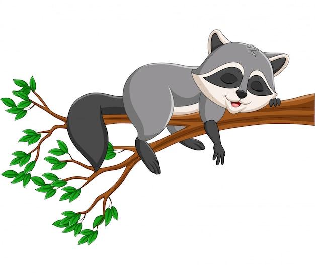 Мультяшный енот спит на ветке дерева
