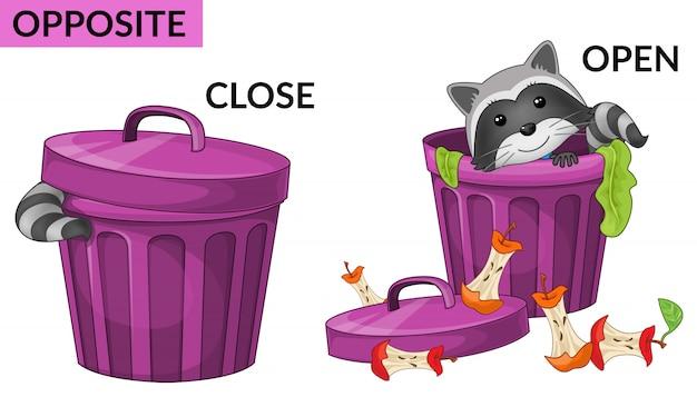 Cartoon raccoons. opposites.