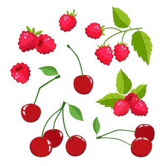 Cartoon raspberries and cherries with green leaves isolated on white, bright berries branch.