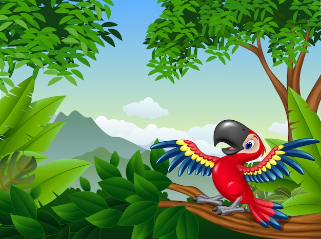 Cartoon red toucan in the jungle