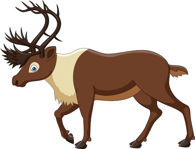 Cartoon reindeer isolated on white background