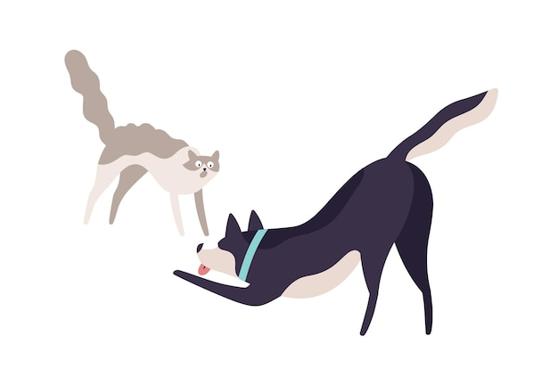 만화 겁 먹은 고양이와 흥분된 개 싸움 벡터 평면 그림. 귀여운 다채로운 국내 동물이 흰색 배경에 격리되어 함께 놀고 있습니다. 서로 공격적인 두 화난 애완동물.