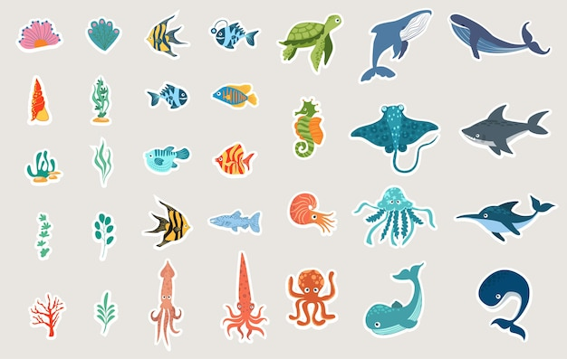 Cartoon sea animals cute turtle whale dolphin octopus and colorful fishes childish colored flat