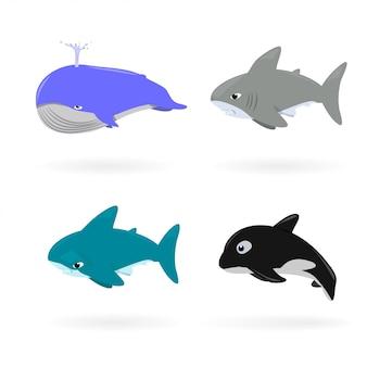 野生動物やマスコットデザインのために白く漫画の海の動物
