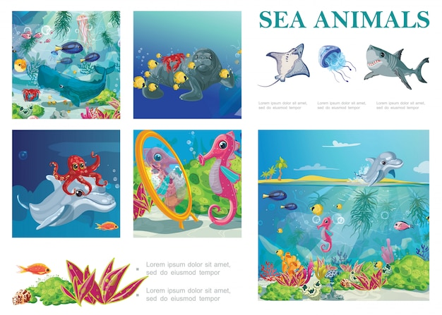 Cartoon sea life composition with stingray shark jellyfish seal seahorse octopus fishes dolphin crab seaweeds and corals