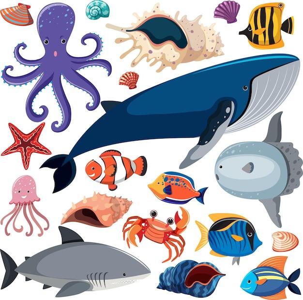 바다 동물 캐릭터와 함께 만화 바다 생활 원활한 패턴