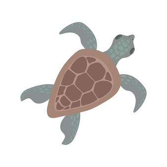 Cartoon sea turtle vector illustration in flat style