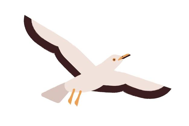 Cartoon seagull flying straighten wings vector flat illustration. colorful atlantic seabird character representative of wildlife fauna species isolated on white background. marine gull bird.