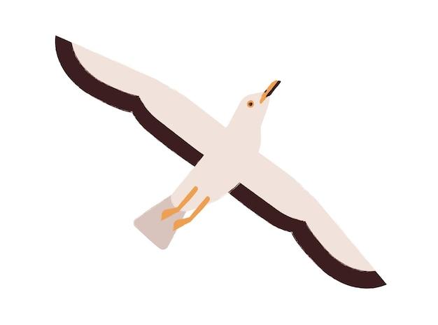 Cartoon seagull take off straighten wings vector flat illustration. colorful marine bird flying enjoying freedom isolated on white background. beautiful wild atlantic seabird.