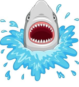 Мультфильм акула с открытыми челюстями, изолированных на белом фоне