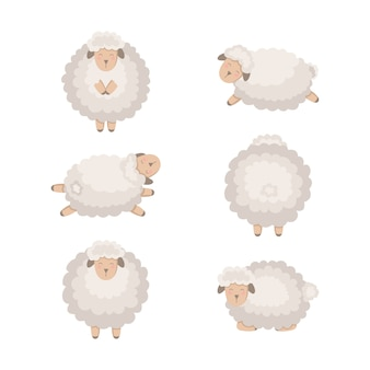Cartoon sheep collection isolated on white.