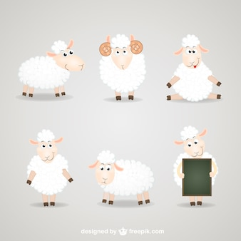 Cartoon sheep collection
