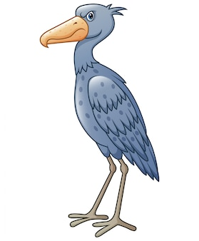 Cartoon shoebill isolated