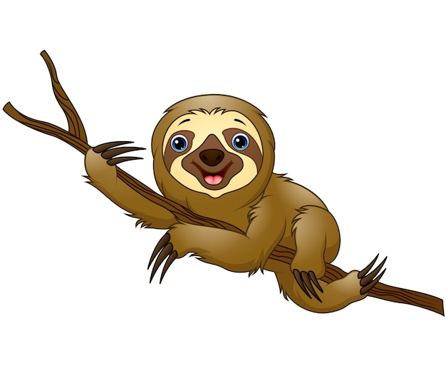 Cartoon sloth on a tree branch