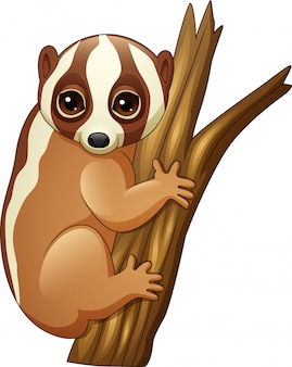 Cartoon slow loris on the branch