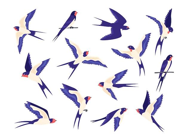 漫画の小さなツバメの鳥の飛行ポーズ。平らなツバメは空を飛んで、ワイヤーの上に座ります。スイフトの黒と白の鳥の群れ。ベクトルセットを飲み込みます。群れツバメ、翼グループの鳥のイラスト