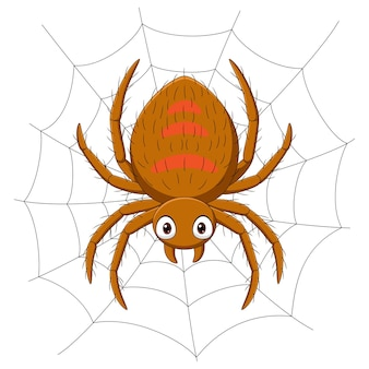 Cartoon spider on the cobweb