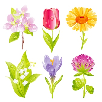 Cartoon spring flowers icon set.