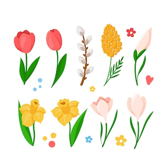 Cartoon spring flowers set - tulips, daffodil, narcissus, mimosa, snowdrop, willow branch,