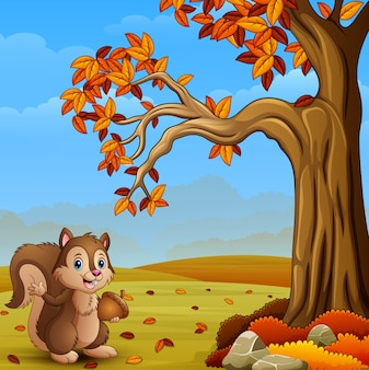 Cartoon squirrel in the autumn forest