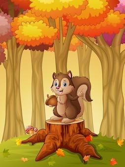 Мультфильм белка, проведение желудь в лесу