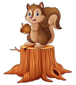 Cartoon squirrel standing on tree stump holding an acorn