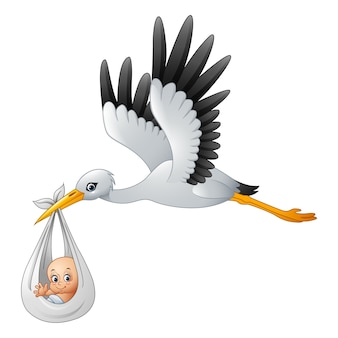 Stork Vectors, Photos and PSD files | Free Download
