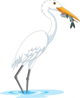 Cartoon stork eating a fish