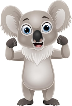 Cartoon strong koala isolated on white
