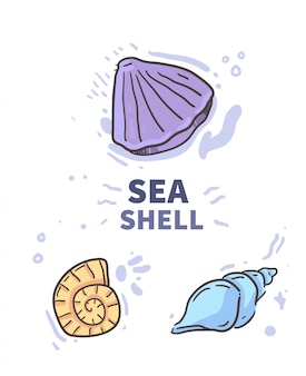 Cartoon style shell doodle . shell illustration