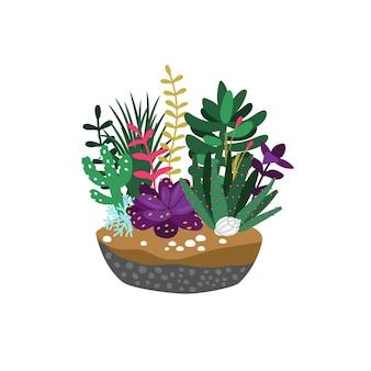 Мультяшные суккуленты. композиция из милых кактусов и ветвей с листьями, рисованной цветочной природы, векторные иллюстрации концепции садоводства, изолированные на белом фоне