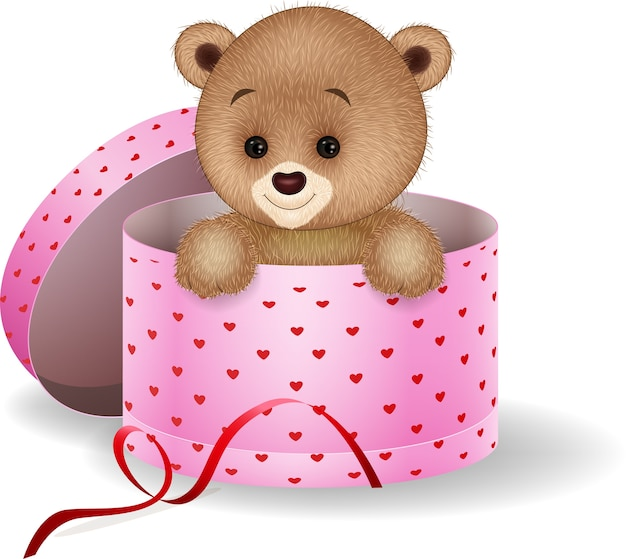 Cartoon teddy bear in the gift box