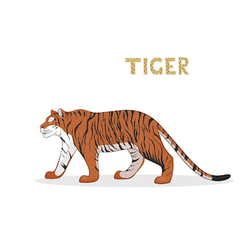 A cartoon tiger, isolated. animal.