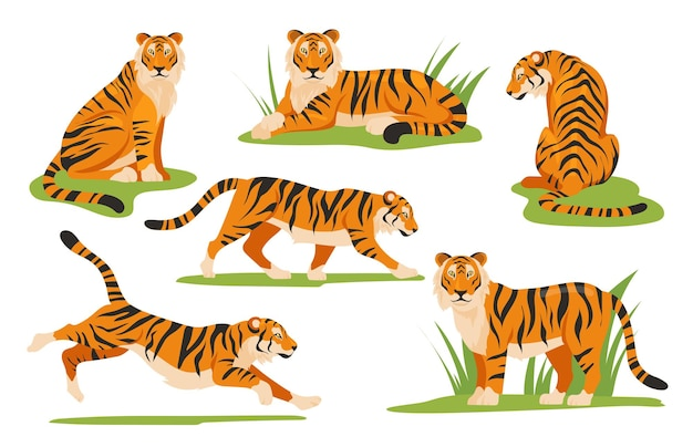 Cartoon tiger set
