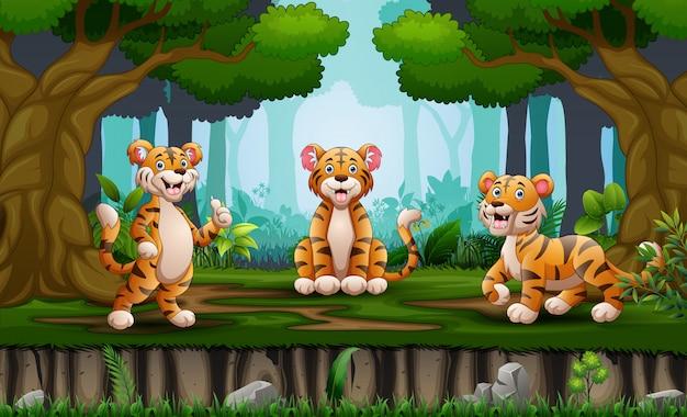 Cartoon tree tigers enjoying in the jungle