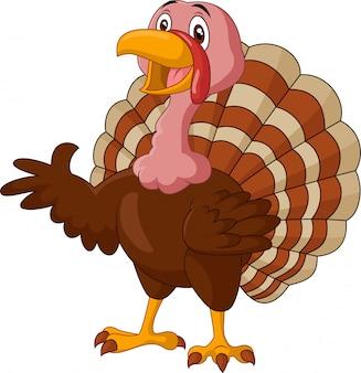 Cartoon turkey presenting on white background